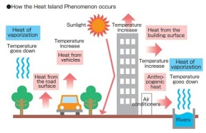 Heat-Island-Effect
