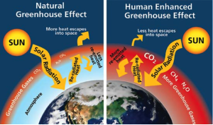 greenhouse-effect-09-2014