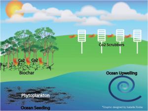 Geoengineering CDR-strategies